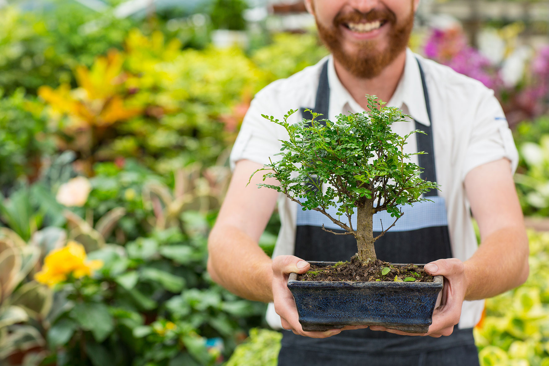 Horticulture Therapy